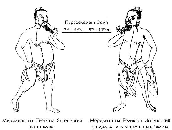 меридиани на стомаха и панкреаса